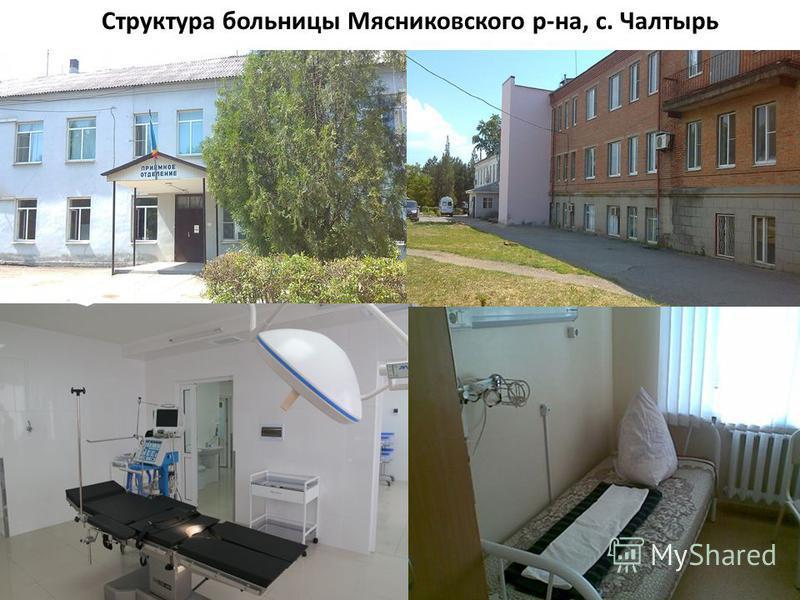 Структура больницы Мясниковского р-на, с. Чалтырь