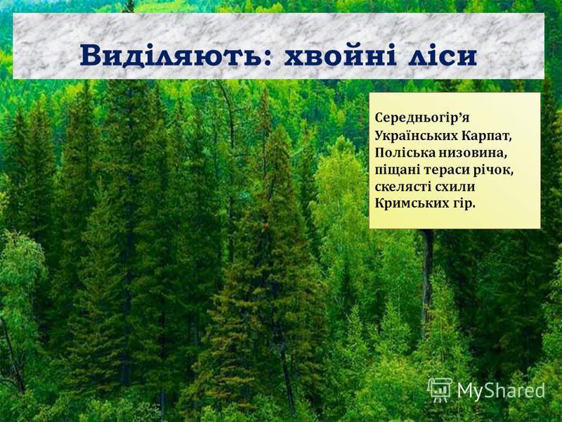 Виділяють: хвойні ліси Середньогір я Українських Карпат, Поліська низовина, піщані тераси річок, скелясті схили Кримських гір.