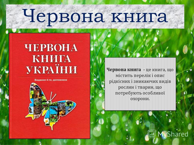 Червона книга Червона книга - це книга, що містить перелік і опис рідкісних і зникаючих видів рослин і тварин, що потребують особливої охорони.