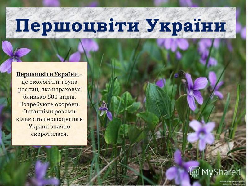 Першоцвіти України Першоцвіти України – це екологічна група рослин, яка нараховує близько 500 видів. Потребують охорони. Останніми роками кількість першоцвітів в Україні значно скоротилася.