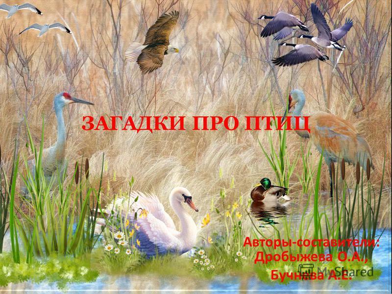 ЗАГАДКИ ПРО ПТИЦ Авторы-составители: Дробыжева О.А., Бучнева А.Е.