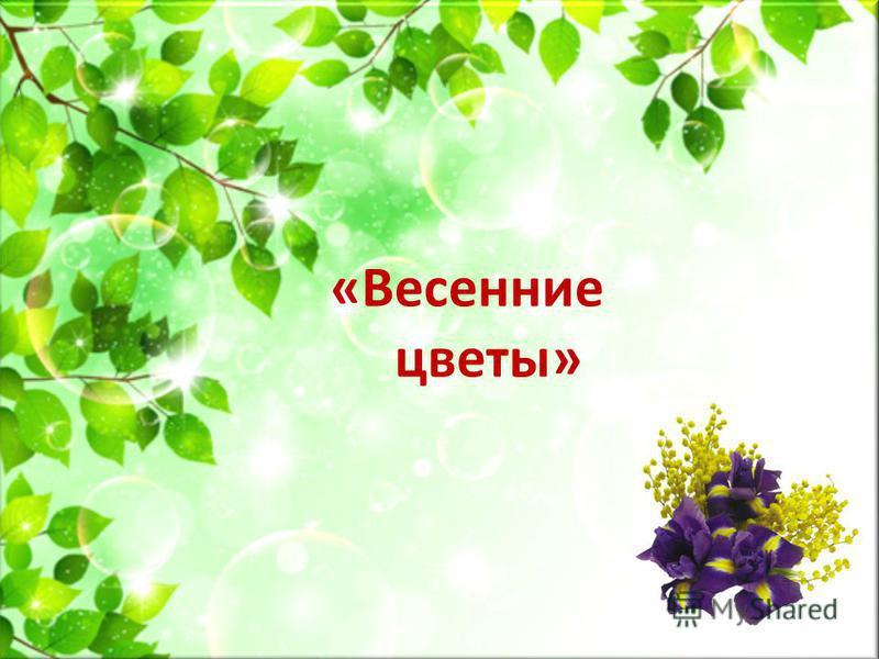 «Весенние цветы»