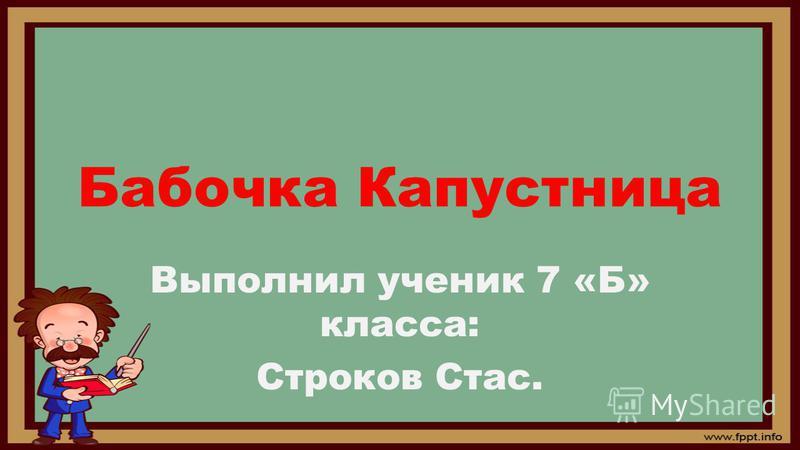 Бабочка Капустница Выполнил ученик 7 «Б» класса: Строков Стас.