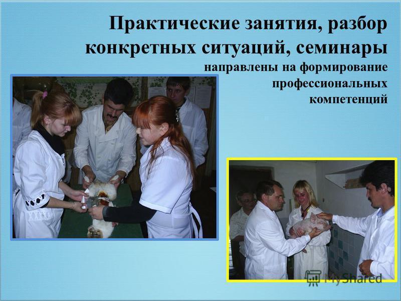 Практические занятия, разбор конкретных ситуаций, семинары направлены на формирование профессиональных компетенций