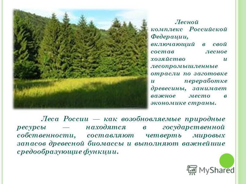 Лесной комплекс Российской Федерации, включающий в свой состав лесное хозяйство и лесопромышленные отрасли по заготовке и переработке древесины, занимает важное место в экономике страны. Леса России как возобновляемые природные ресурсы находятся в го