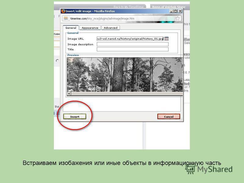 Встраиваем изображения или иные объекты в информационную часть