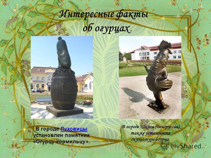 Интересные факты об огурцах. В городе Луховицы установлен памятник «Огурцу-кормильцу».Луховицы В городе Шклов (Белоруссия) также установлена скульптура огурца.