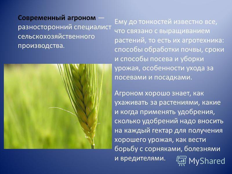 Современный агроном разносторонний специалист сельскохозяйственного производства. Ему до тонкостей известно все, что связано с выращиванием растений, то есть их агротехника: способы обработки почвы, сроки и способы посева и уборки урожая, особенности