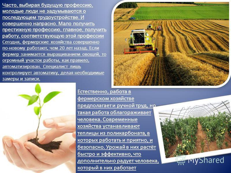 работа в питомниках москвы и московской области