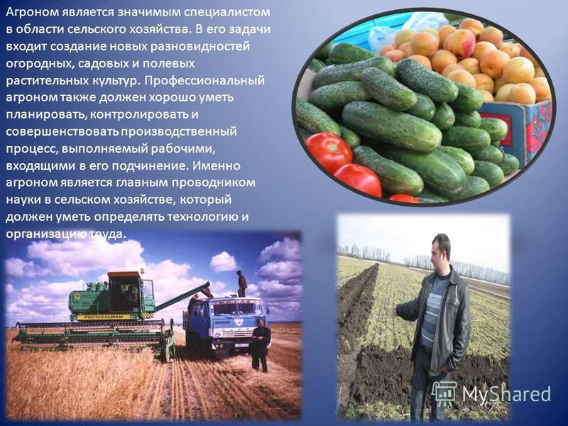 Агроном является значимым специалистом в области сельского хозяйства. В его задачи входит создание новых разновидностей огородных, садовых и полевых растительных культур. Профессиональный агроном также должен хорошо уметь планировать, контролировать