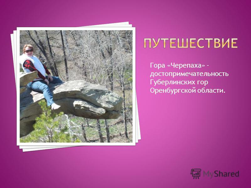Гора «Черепаха» - достопримечательность Губерлинских гор Оренбургской области.