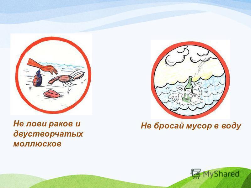 Не лови раков и двустворчатых моллюсков Не бросай мусор в воду