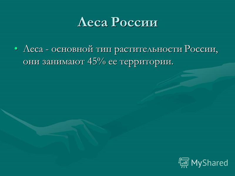Леса России Леса - основной тип растительности России, они занимают 45% ее территории.Леса - основной тип растительности России, они занимают 45% ее территории.