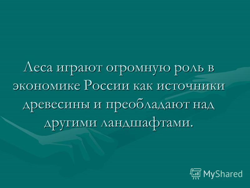 Леса играют огромную роль в экономике России как источники древесины и преобладают над другими ландшафтами.