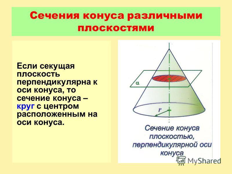 Сечения конуса различными плоскостями Если секущая плоскость перпендикулярна к оси конуса, то сечение конуса – круг с центром расположенным на оси конуса.