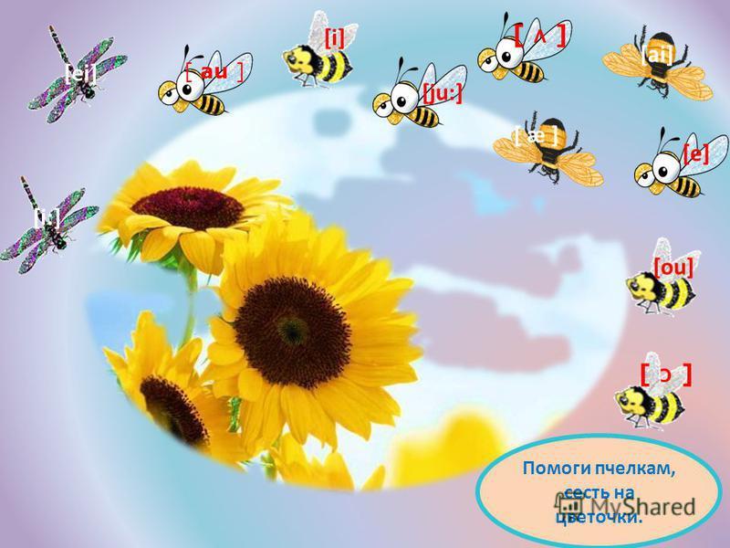 [i] [ei] [ai] [ou] [i:] [ju:] [ æ ] [ ʌ ] [ ɔ ] [e] [ au ] Помоги пчелкам, сесть на цветочки.