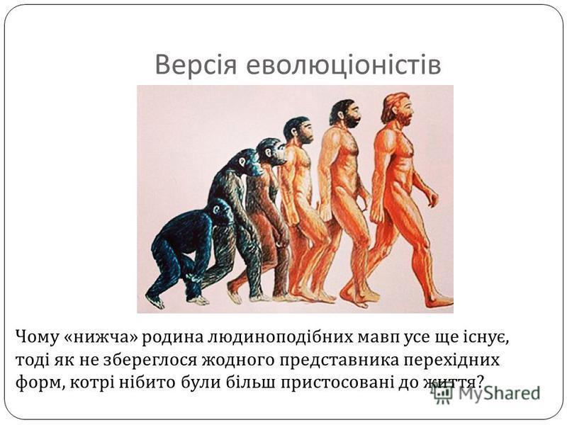 Версія еволюціоністів Чому « нижча » родина людиноподібних мавп усе ще існує, тоді як не збереглося жодного представника перехідних форм, котрі нібито були більш пристосовані до життя ?