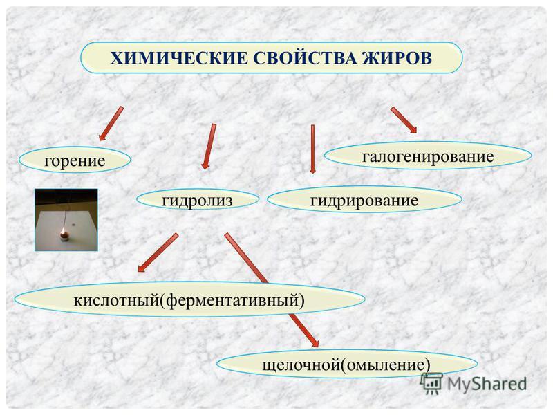 ХИМИЧЕСКИЕ СВОЙСТВА ЖИРОВ горение гидролиз гидрирование галогенирование кислотный(ферментативный) щелочной(омыление)