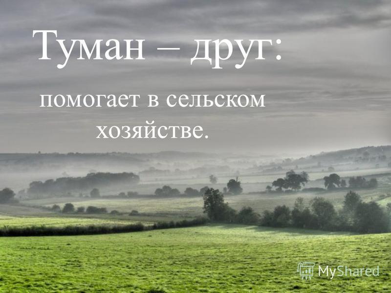 Туман – друг: помогает в сельском хозяйстве.