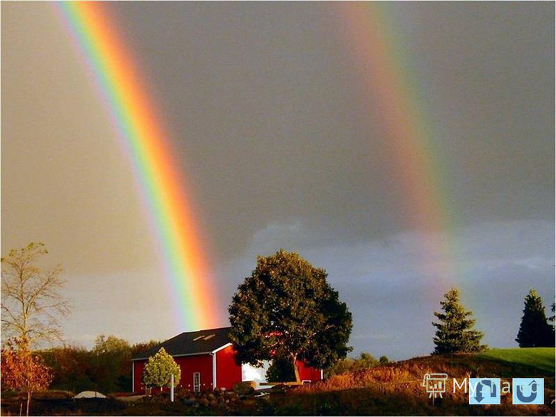Чему нас учат чудеса? Любви к Богу и к другому человеку