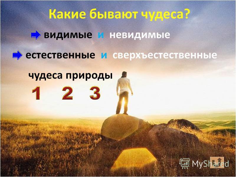 Чудеса – это и знаки от Бога о Его любви к нам.