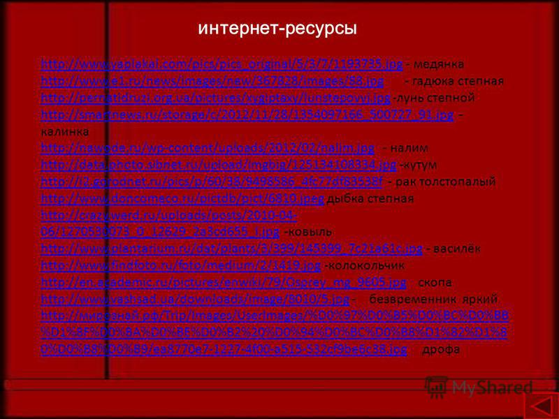 интернет-ресурсы http://www.yaplakal.com/pics/pics_original/5/3/7/1193735.jpghttp://www.yaplakal.com/pics/pics_original/5/3/7/1193735. jpg - медянка http://www.e1.ru/news/images/new/367828/images/88.jpghttp://www.e1.ru/news/images/new/367828/images/8
