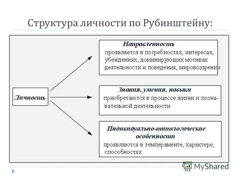 Структура личности по Рубинштейну :