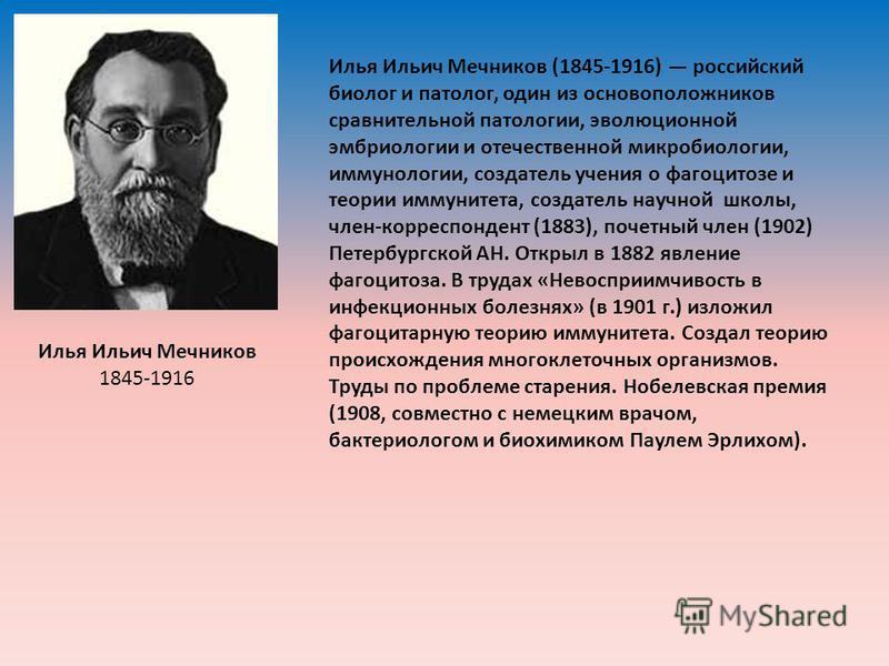 Илья Ильич Мечников 1845-1916 Илья Ильич Мечников (1845-1916) российский биолог и патолог, один из основоположников сравнительной патологии, эволюционной эмбриологии и отечественной микробиологии, иммунологии, создатель учения о фагоцитозе и теории и