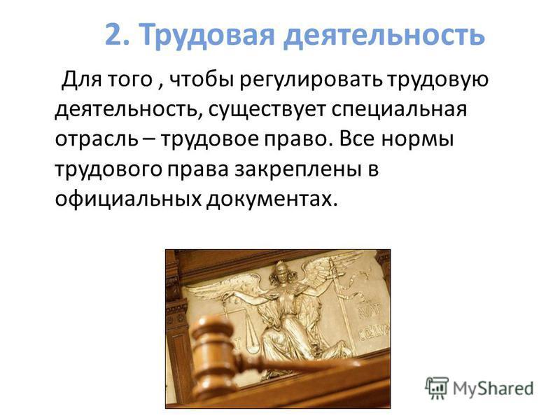 2. Трудовая деятельность Для того, чтобы регулировать трудовую деятельность, существует специальная отрасль – трудовое право. Все нормы трудового права закреплены в официальных документах.