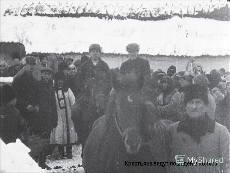ò Крестьяне ведут лошадей в колхоз