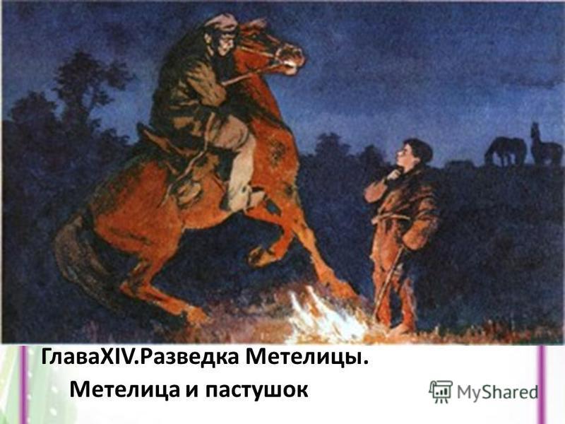 ГлаваXIV.Разведка Метелицы. Метелица и пастушок