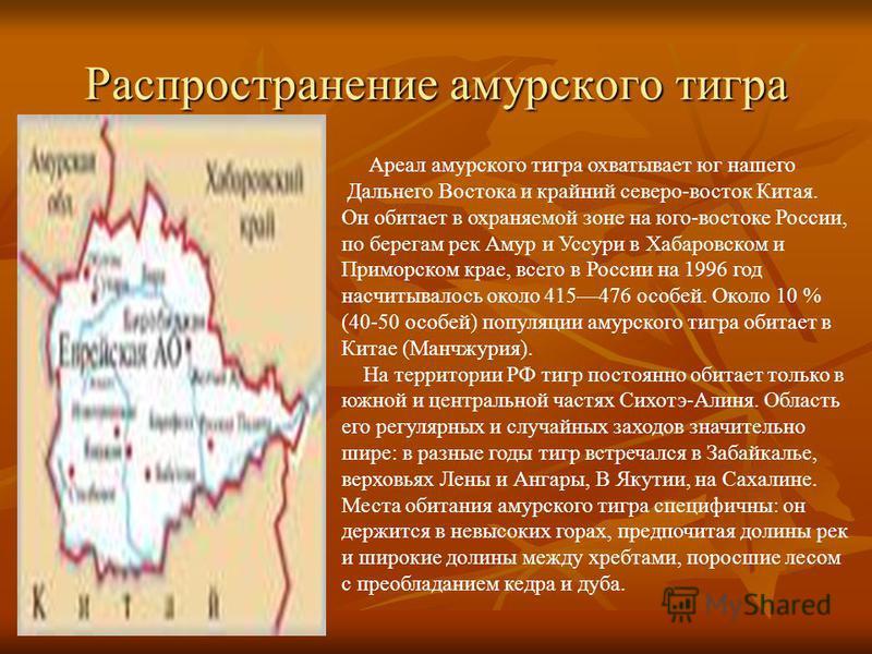 Распространение амурского тигра Ареал амурского тигра охватывает юг нашего Дальнего Востока и крайний северо-восток Китая. Он обитает в охраняемой зоне на юго-востоке России, по берегам рек Амур и Уссури в Хабаровском и Приморском крае, всего в Росси