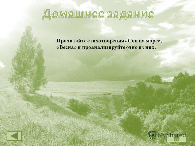 Прочитайте стихотворения «Сон на море», «Весна» и проанализируйте одно из них.