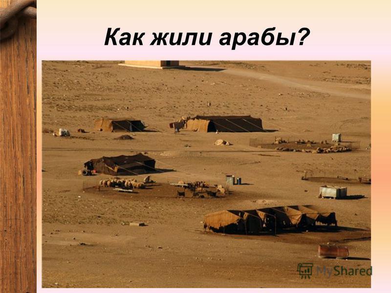 Как жили арабы?