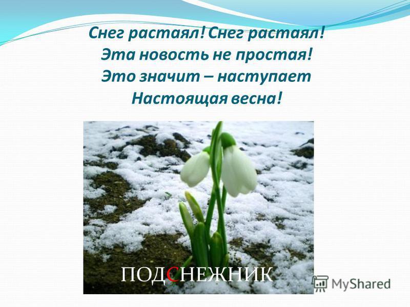 Снег растаял! Снег растаял! Эта новость не простая! Это значит – наступает Настоящая весна! ПОДСНЕЖНИК