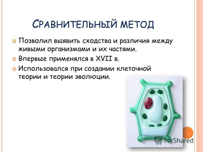 С РАВНИТЕЛЬНЫЙ МЕТОД Позволил выявить сходства и различия между живыми организмами и их частями. Впервые применялся в XVII в. Использовался при создании клеточной теории и теории эволюции.