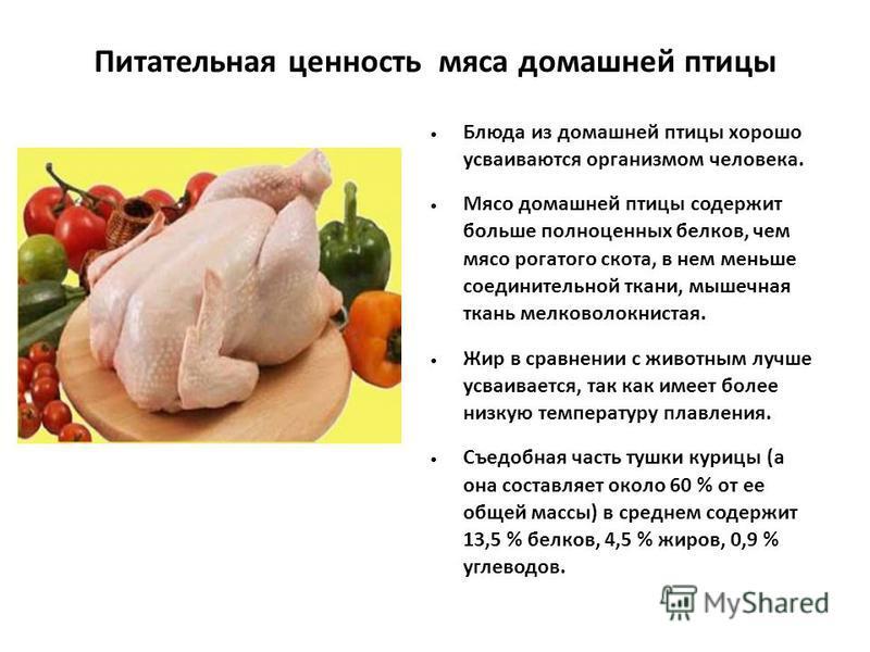 может история происхождения блюда курица рубленая из птицы Затухание сразу