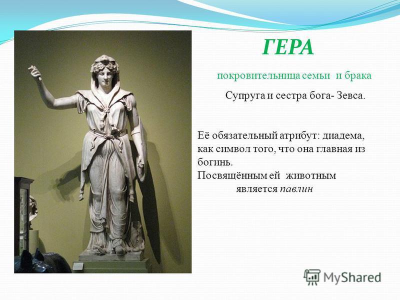 ГЕРА покровительница семьи и брака Супруга и сестра бога- Зевса. Её обязательный атрибут: диадема, как символ того, что она главная из богинь. Посвящённым ей животным является павлин