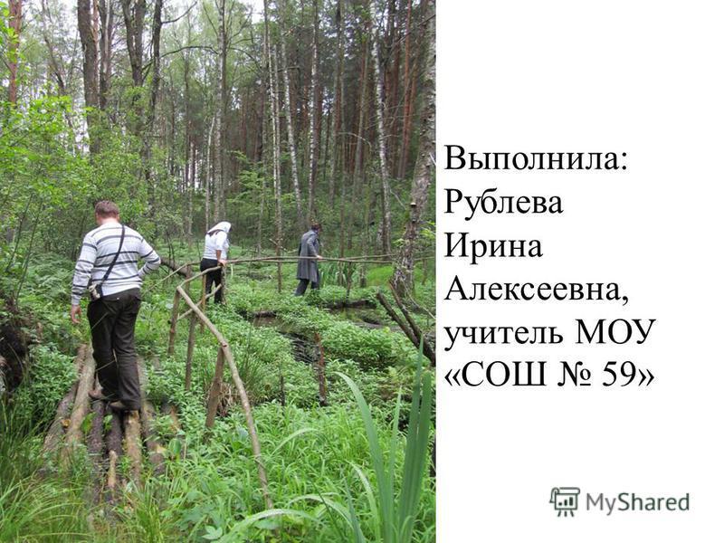 Выполнила: Рублева Ирина Алексеевна, учитель МОУ «СОШ 59»
