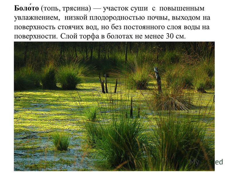 Боло́то (топь, трясина) участок суши с повышенным увлажнением, низкой плодородностью почвы, выходом на поверхность стоячих вод, но без постоянного слоя воды на поверхности. Слой торфа в болотах не менее 30 см.