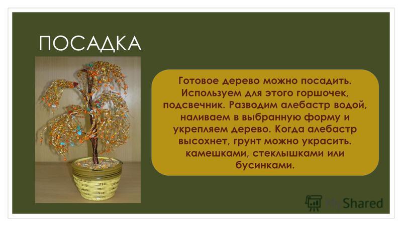 ПОСАДКА Готовое дерево можно посадить. Используем для этого горшочек, подсвечник. Разводим алебастр водой, наливаем в выбранную форму и укрепляем дерево. Когда алебастр высохнет, грунт можно украсить. камешками, стеклышками или бусинками.