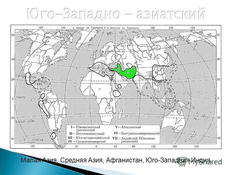 Малая Азия, Средняя Азия, Афганистан, Юго-Западная Индия.