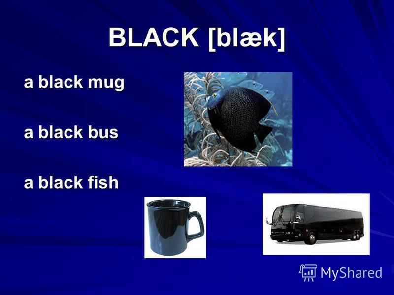 BLACK [blæk] a black mug a black bus a black fish