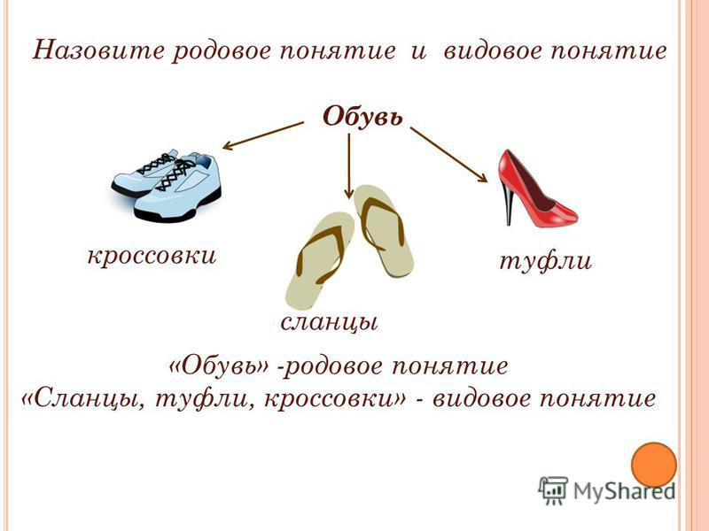 Назовите родовое понятие и видовое понятие «Обувь» -родовое понятие «Сланцы, туфли, кроссовки» - видовое понятие Обувь кроссовки сланцы туфли