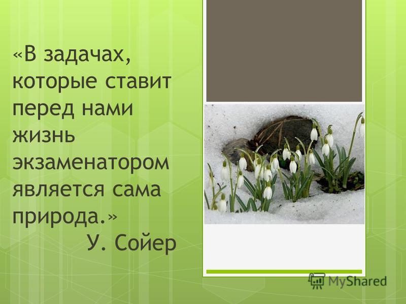 «В задачах, которые ставит перед нами жизнь экзаменатором является сама природа.» У. Сойер