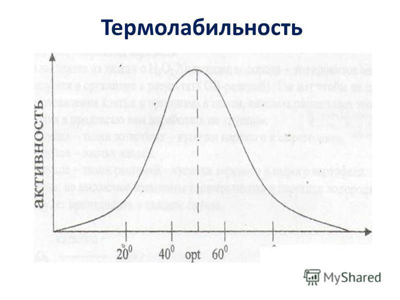 Термолабильность