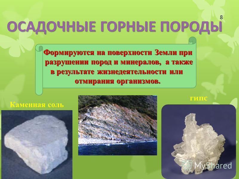 Формируются на поверхности Земли при разрушении пород и минералов, а также разрушении пород и минералов, а также в результате жизнедеятельности или отмирания организмов. гипс Каменная соль 8 ОСАДОЧНЫЕ ГОРНЫЕ ПОРОДЫ
