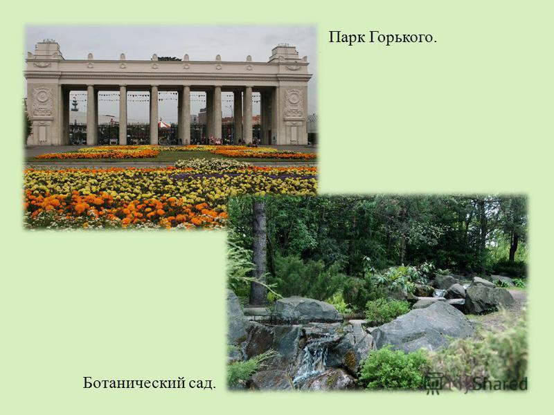 Парк Горького. Ботанический сад.