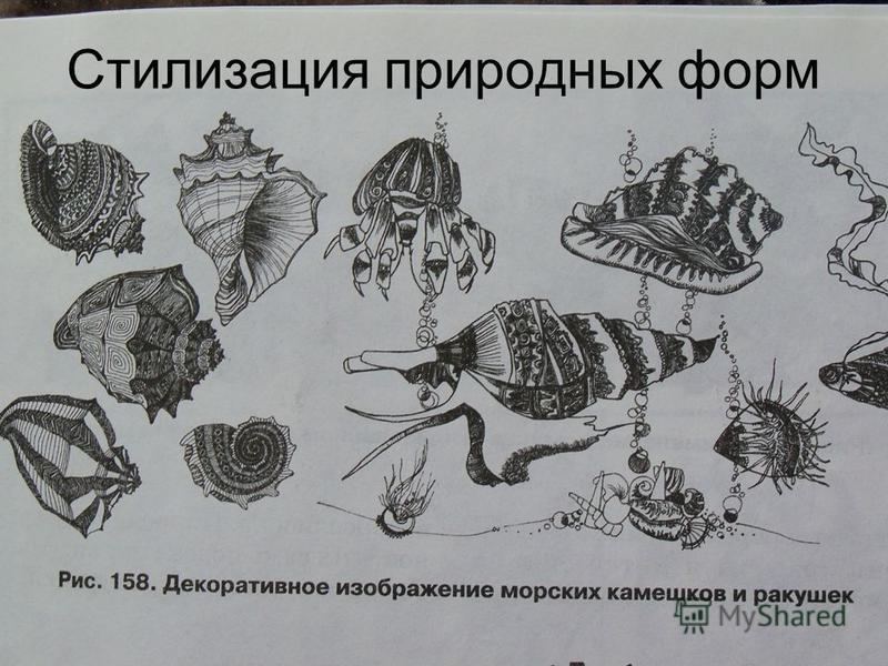 Стилизация природных форм