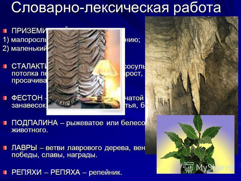 Словарно-лексическая работа ПРИЗЕМИСТЫЙ – 1) малорослый и плотный по сложению; 2) маленький, низкий. СТАЛАКТИТ – имеющий форму сосульки, спускающейся с потолка пещеры, известковый нарост, образованный просачивающимися каплями. ФЕСТОН – один из выступ